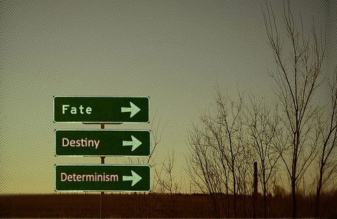 essay on fate and destiny