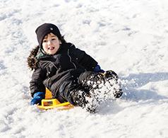 boy-sledding