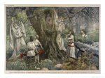Druids-and-Oak-Tree